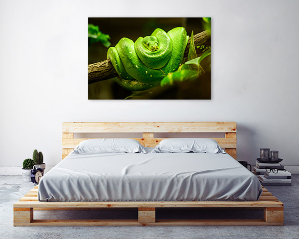 Green Snake Wall Art Print