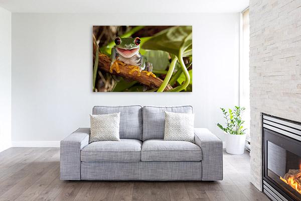Happy Tree Frog Canvas Prints