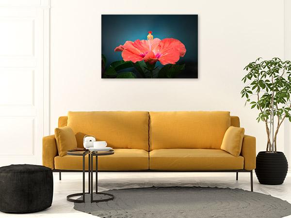 Hibiscus Canvas Photo