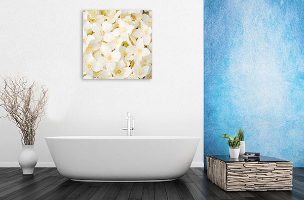 Jasmine Flowers Wall Art