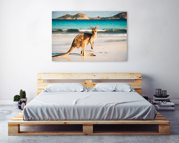 Kangaroo in Beach Print Photo