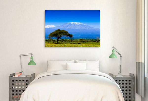 Kilimanjaro Print Wall Art