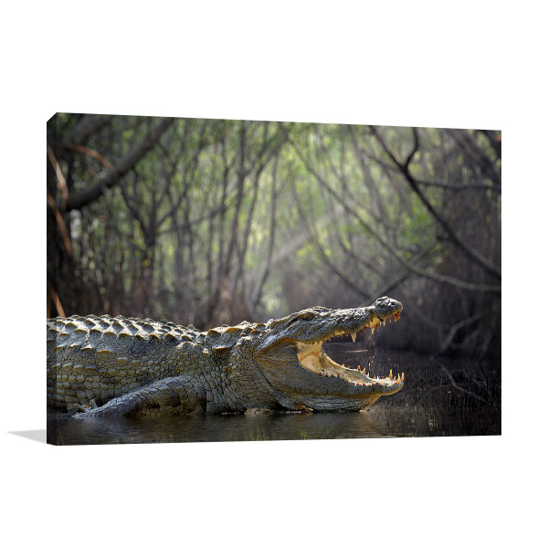 Large Crocodile Wall Art Photo Print