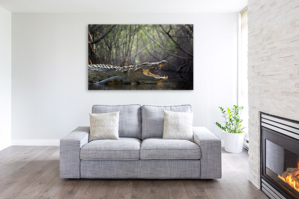 Large Crocodile Photo Wall Arts