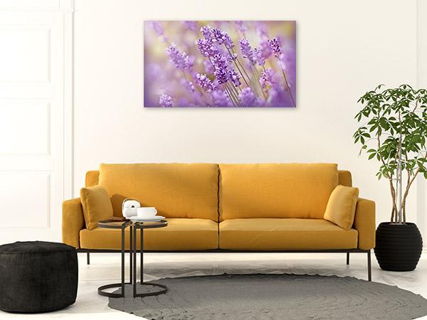 Lavender Closeup Picture Canvas
