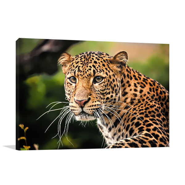 Leopard Profile Canvas Wall Art
