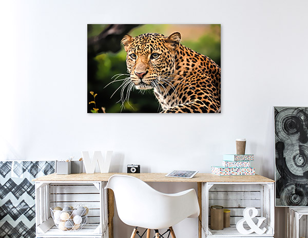Leopard Profile Prints Canvas