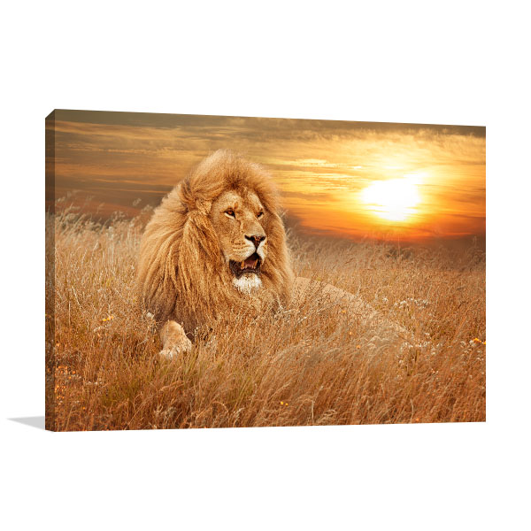Lion in Grass Art Picture