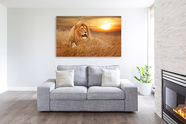 Lion in Grass Wall Picture