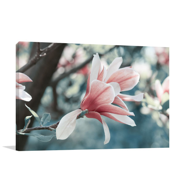 Magnolia in Spring Wall Artwork