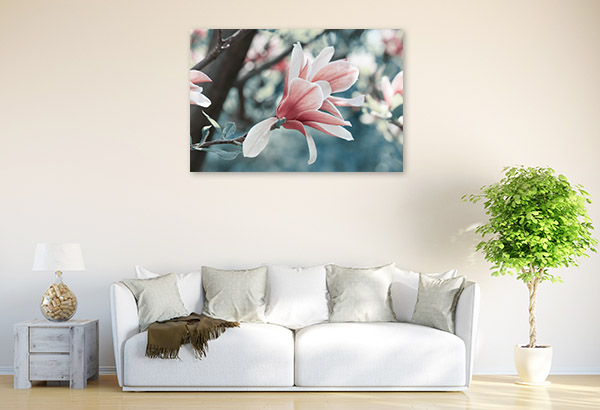Magnolia in Spring Artwork Canvas