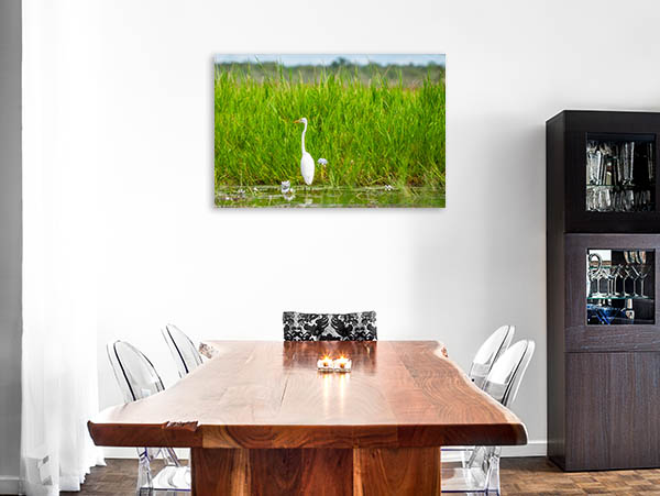 Mary River Art Print Great Egret Canvas Art
