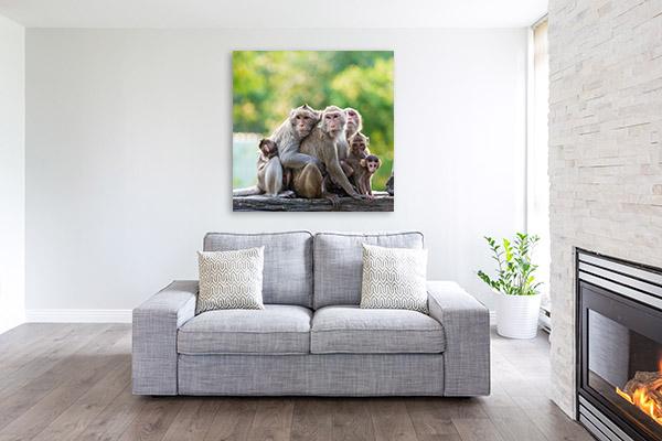 Monkey Family Artwork Canvas