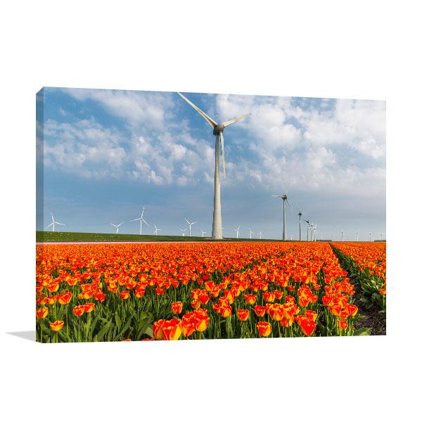 Netherlands Art Print Noordoostpolder Photo Artwork