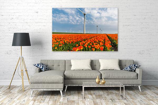 Netherlands Art Print Noordoostpolder Picture Canvas