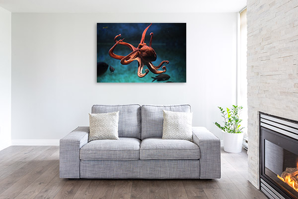 Octopus Print Photo Art