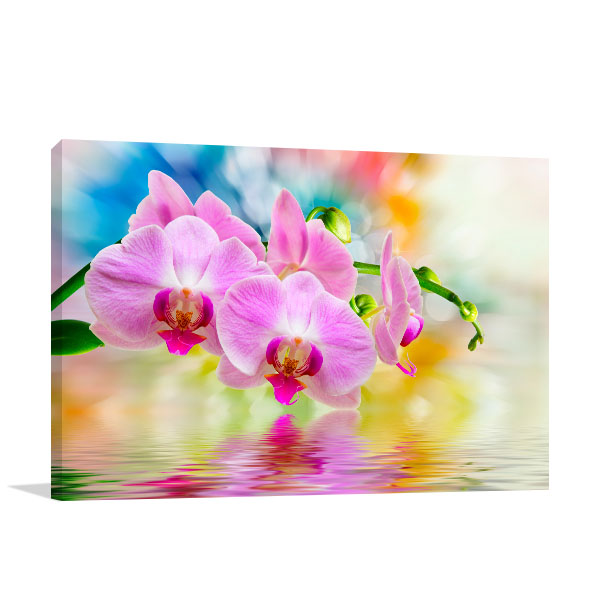 Orchid Watercolour Background Print Photo
