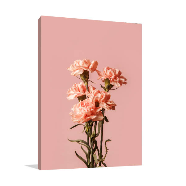 Peach Carnations Canvas Art