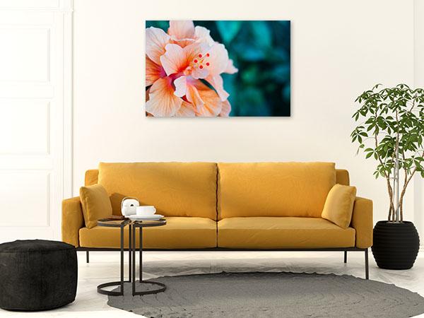 Peach Hibiscus Artwork