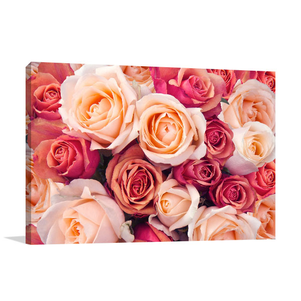 Peach Roses Picture Artwork