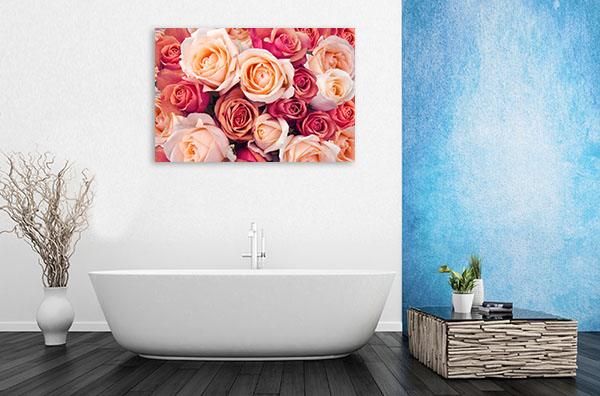 Peach Roses Wall Art