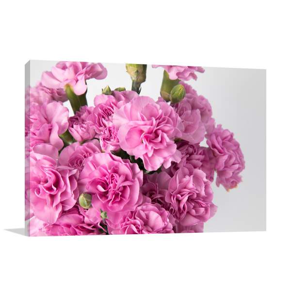 Pink Carnations Print Photo Art