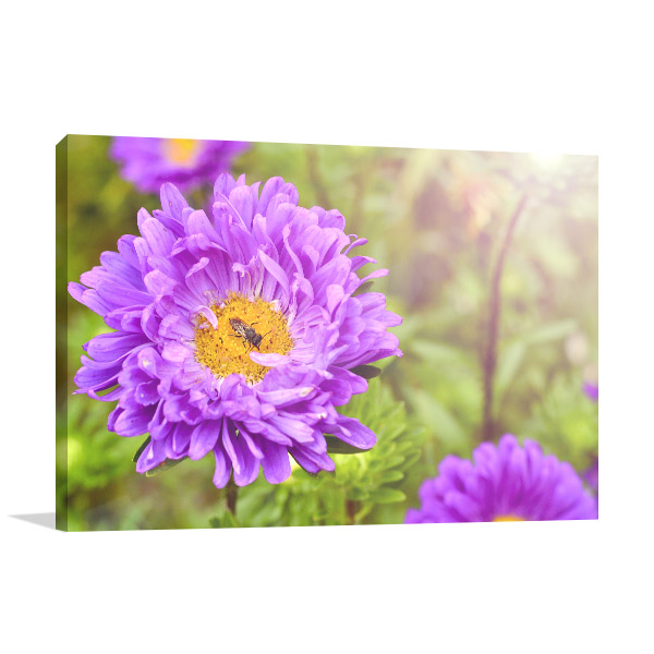 Purple Asters Artwork Wall