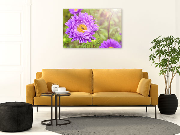Purple Asters Print Artwork