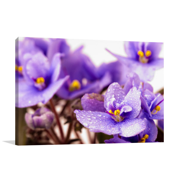 Purple Flower Macro Wall Artwork