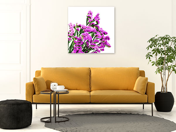 Purple Statice Picture Print
