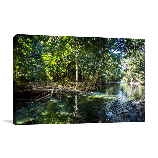 Queensland Canvas Print Creek Cape Photo Wall Arts
