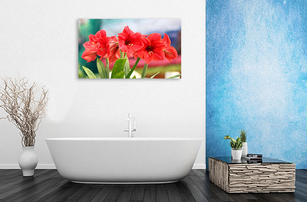 Red Amaryllis Artwork