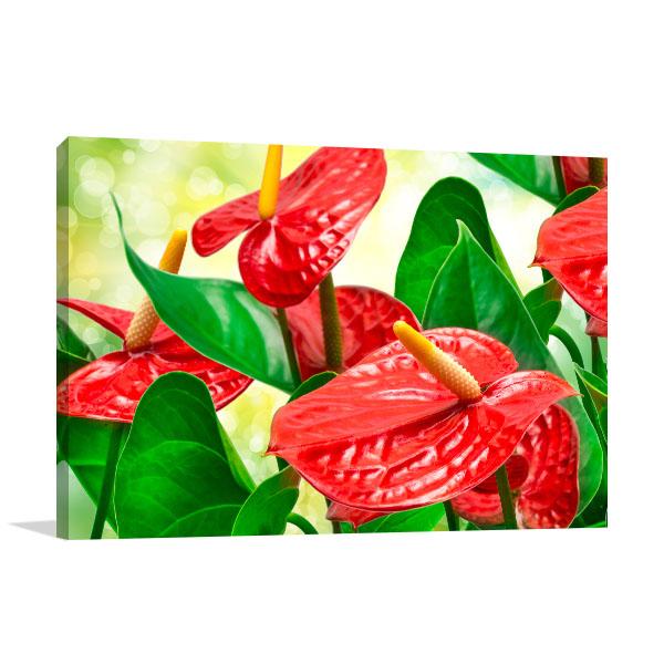 Red Anthurium Wall Art Print