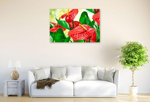 Red Anthurium Picture Canvas