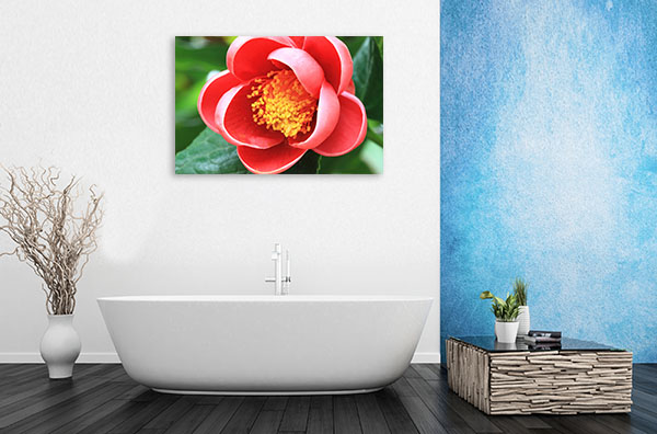 Red Camellia Artwork Canvas