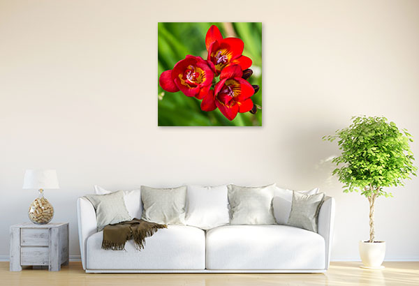 Red Freesia Canvas Wall