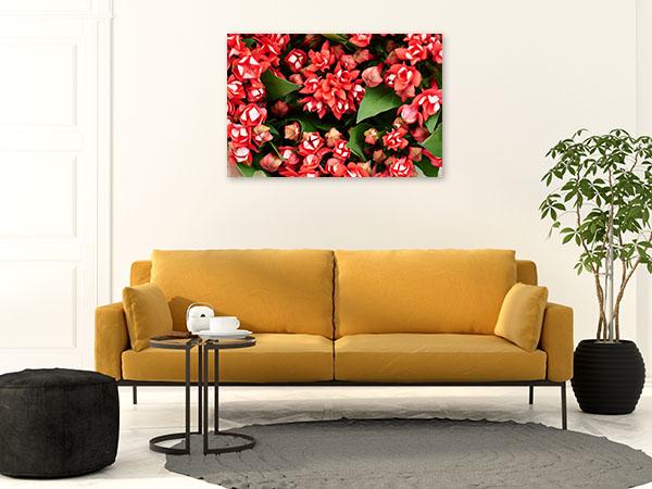 Red Longiflora Artwork Picture