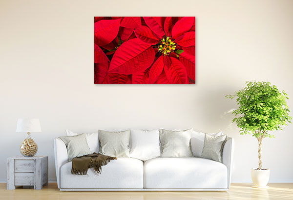 Red Poinsettia Artwork Wall