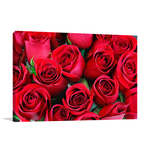 Red Roses Bouquet Picture Wall