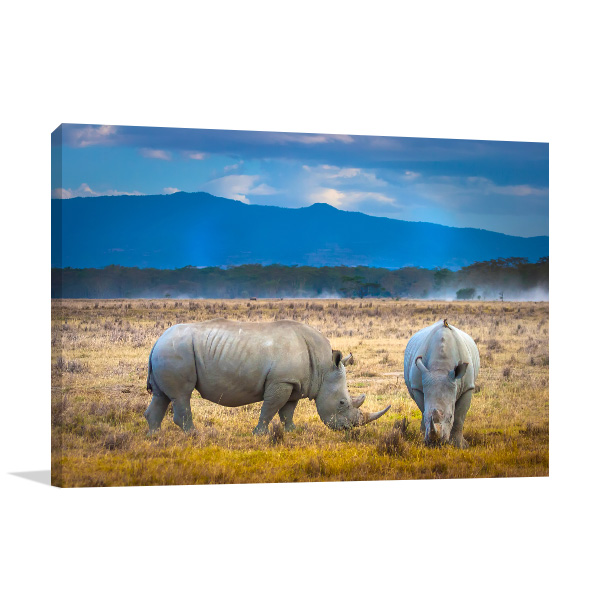 Rhinos in Africa Print Photo Art