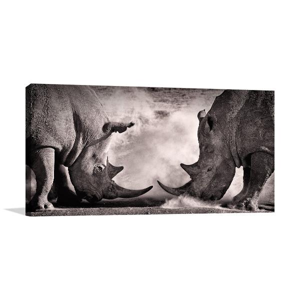 Rhinos in Battle Wall Art Photo Print