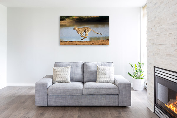 Running Cheetah Canvas Prints