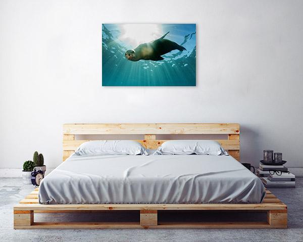 Sea Lion Artwork
