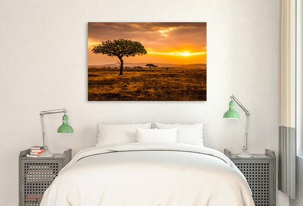 Serengeti Print Photo