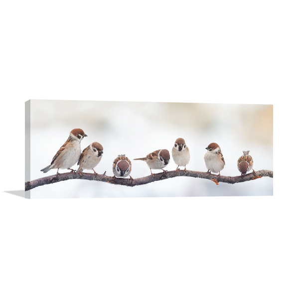 Sparrows on a Branch Photo Print