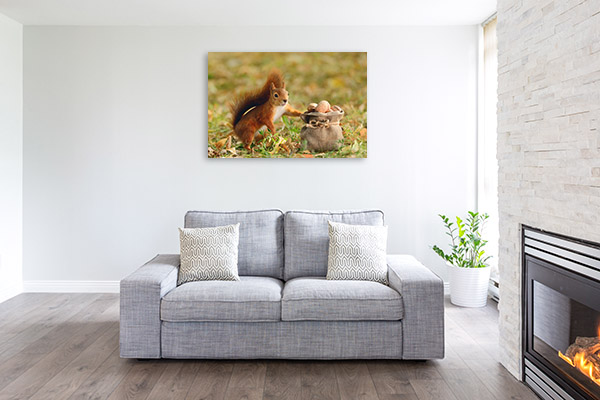 Squirrel with Bag of Nuts Wall Art Photo Print