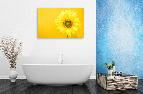 Sunflower on Yellow Background Wall Canvas