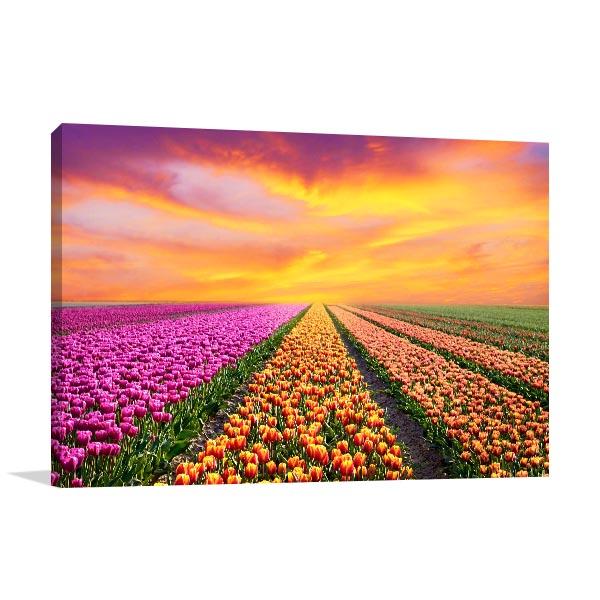 Tulip Fields Wall Art Photo Print