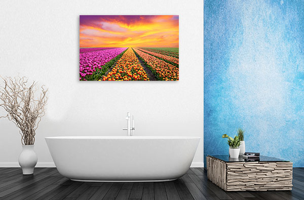 Tulip Fields Picture Wall