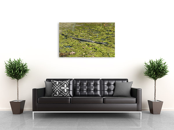 Wetlands Art Print Mart River Moss Canvas Photo
